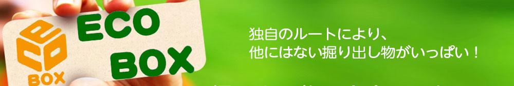 総合リサイクルショップ エコボックス